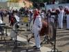 0057_Bresseo_di_Teolo_PD_14-10-2012_plt